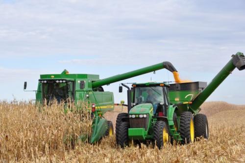 全程机械化栽培生产饲料玉米