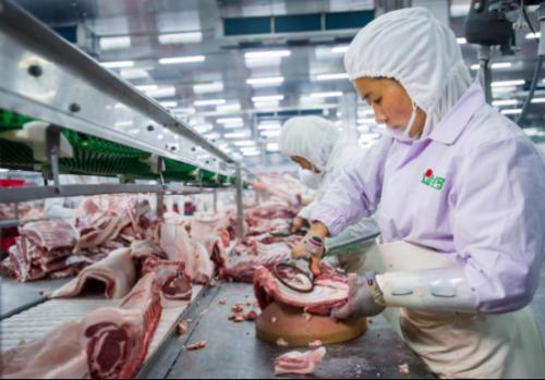 金锣践行全产业链品控管理 筑牢食品安全防线