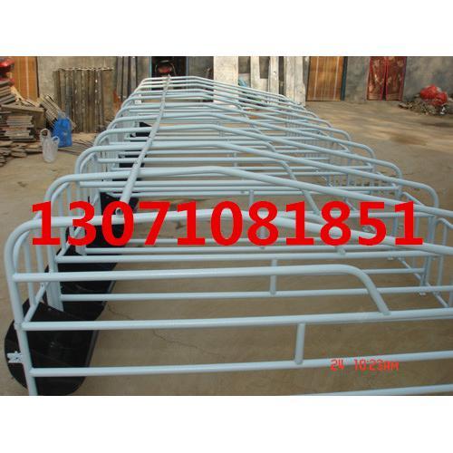 母猪定位栏价格 母猪定位栏制作尺寸 定位栏厂家